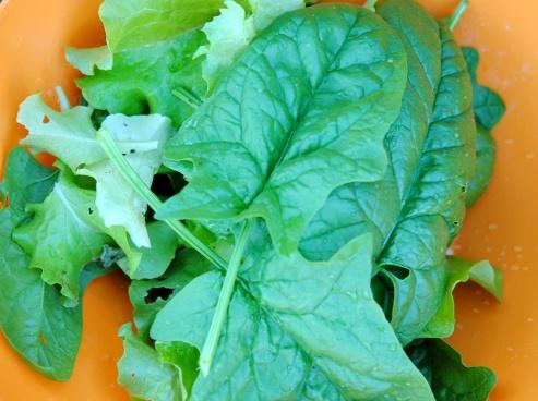 5-2-salad.-2jpg
